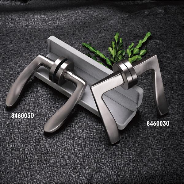 Stainless Steel Door Handle (846-P58)