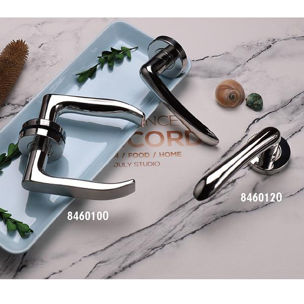 Stainless Steel Door Handle (846-P62-2)